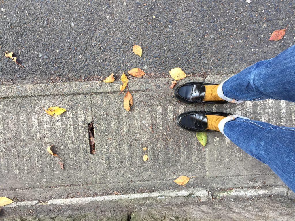 秋が落ちてた