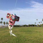 【マリンポートかごしま】で和凧を揚げたよ。
